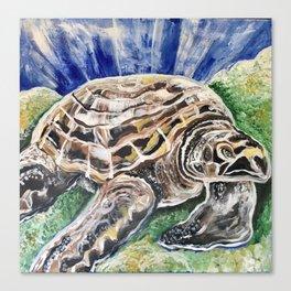 Sea Turtle Print Ocean Canvas Print