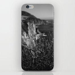 Big Sur Wild Flowers iPhone Skin