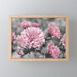 Blushing Gray Framed Mini Art Print