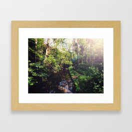 Down by the Stream Framed Art Print