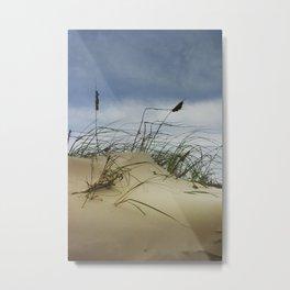 Dune and Beach Grass on Padre Island National Seashore Metal Print