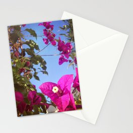 #237 #Hope is alive / #Bouganvillea Stationery Cards