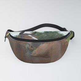 Two Warmblood Horses Playing Together Bay 72 Fanny Pack