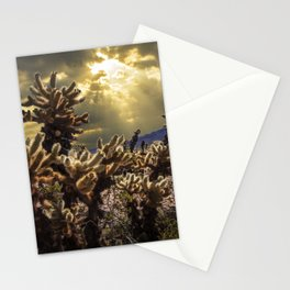 Cholla Cactus Garden bathed in Sunlight in Joshua Tree National Park California Stationery Cards
