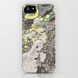 Lichen color iPhone Case