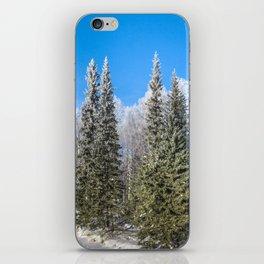Frozen forest iPhone Skin