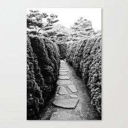 Paths Canvas Print