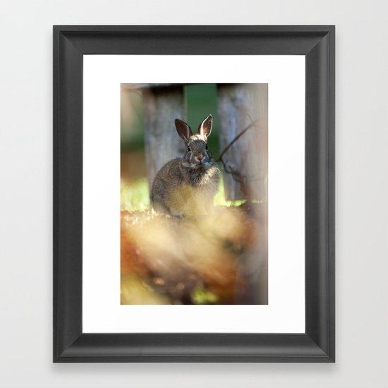Backyard Friend Framed Art Print
