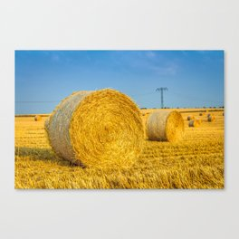 Haye bale in the harvest time Canvas Print