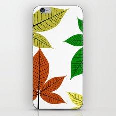 Fall season at its best iPhone & iPod Skin