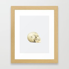 Skull Study 1 - Human Framed Art Print