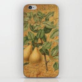 Vintage Pears & Ephemera Collage - Vintage Botanical Pears Illustration iPhone Skin