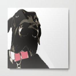 Great Dane Dog (black-pink collar) Metal Print