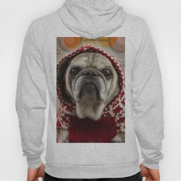 Mr. Buttons, Professional Pug Hoody