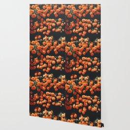 Orange Flowers Everywhere Wallpaper