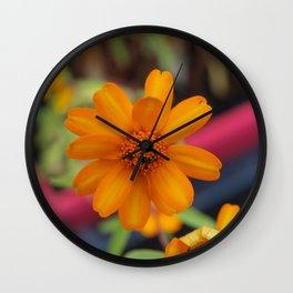 Zinnia Starbright Wall Clock