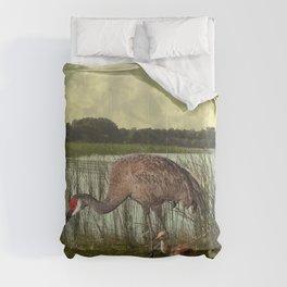 Florida Sandhill Crane and Baby Comforters