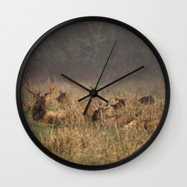Roosevelt Elk Wall Clock
