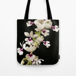 Calanthe rosea Orchid Tote Bag