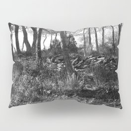 Black and white country wicked forest Pillow Sham