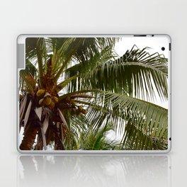 Costa Palms Laptop & iPad Skin