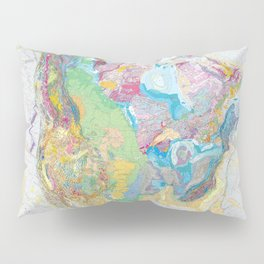 USGS Geological Map of North America Pillow Sham