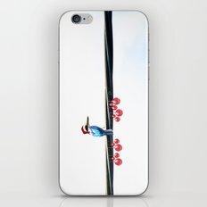 Tis The Season - Kingfisher iPhone & iPod Skin