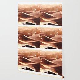 Cold Dunes Wallpaper