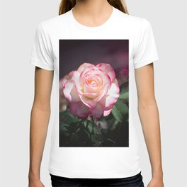 Pink and White Rose with a little magic Star Dust T-shirt
