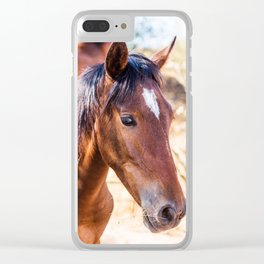 Brown Wild Horse Clear iPhone Case