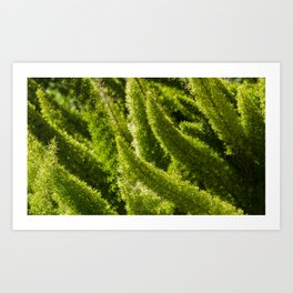 Green world Art Print