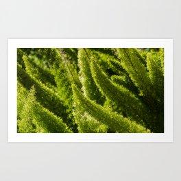 Green world Art Print