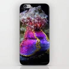 Ocean Life iPhone & iPod Skin