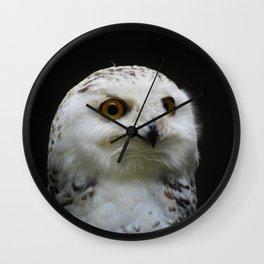 Owl_20180205_by_JAMFoto Wall Clock