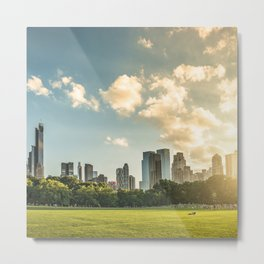 central park in nyc Metal Print