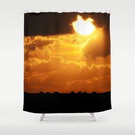 Sheep 3 Shower Curtain