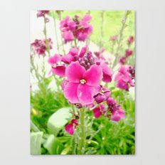 Chartwell Canvas Print