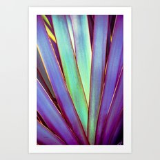 Fiesta Palm Art Print