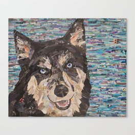 huskie on blue background Canvas Print
