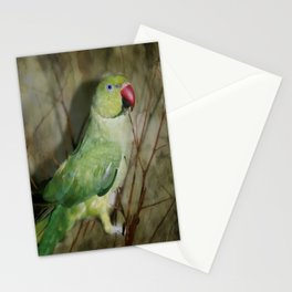 Indian Ringneck Parrot - Cherokee Stationery Cards