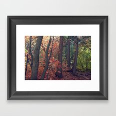 Crimson Forest Framed Art Print