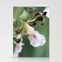 monkey island Stationery Cards featuring Monkey Orchide by BACK to THE ROOTS