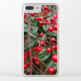 Winter Berries 8x12 Clear iPhone Case