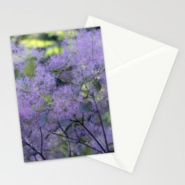 Longwood Gardens - Spring Series 209 Stationery Cards