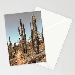 Mesa Stationery Cards