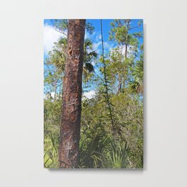 The Summer of Silence Metal Print