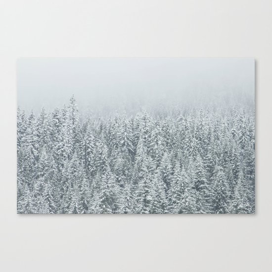 snow  forest winter trees Canvas Print