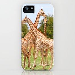 Giraffe family, Africa wildlife iPhone Case
