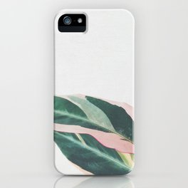Pink Leaves II iPhone Case