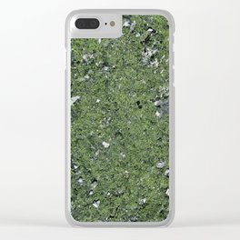 Life on a Rock at the Top of a Mountain Clear iPhone Case